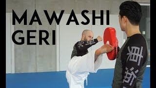 In this video we show you important points for MAWASHI GERI and different exercises how to improve this technique. Music: Erio ...