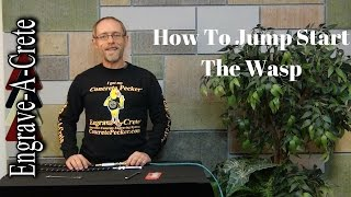 How to Jump Start a Wasp