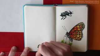 """Bugs"" - Pàinting insects with Copic markers - (timelapse)"