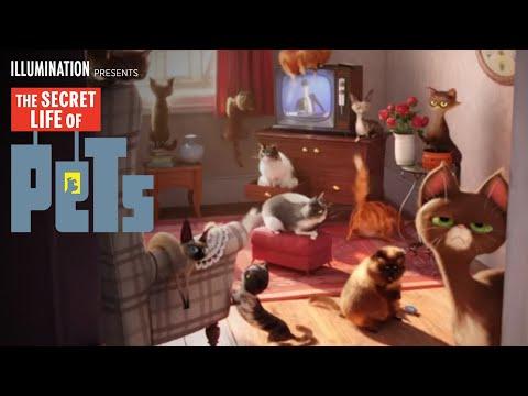 The Secret Life of Pets (Character Spot 'Cat')