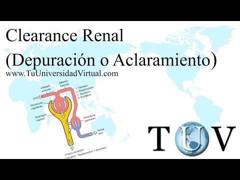 clearance - En éste video se explica de manera muy detallada la depuración o aclaramiento renal, más conocida como clearance renal.