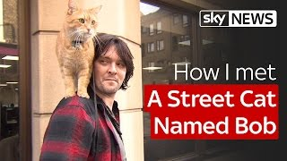 Nonton How I Met A Street Cat Named Bob Film Subtitle Indonesia Streaming Movie Download