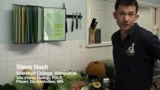 Reptile series: nutrition: shop bought vegetation