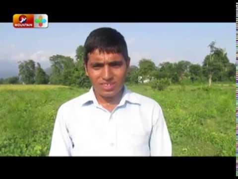 (हजार रुपैयाँको लगानीबाट सुरु गरेको च्याउ खेतीले बनायो करोडपति || Success Story - Duration: 4 minutes, 13 seconds.)