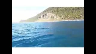 Boab Boats Wollongong Jet Ski Hire