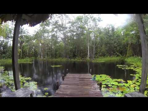Visit to Pandama Retreat on the Soesdyke Highway