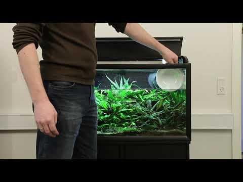 comment nettoyer aquarium tortue d 39 eau la r ponse est sur. Black Bedroom Furniture Sets. Home Design Ideas