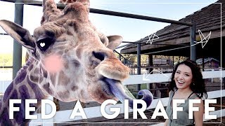 Llamas and zebras and GIRAFFES, OH MY! This month I met some exotic animals face to face, attended an insane runway show, and took a family roadtrip in 120 degree weather! Give this vid a like if you have ever wanted to feed a giraffe and please share your tips on how to survive roadtrips with little ones in the comments!!!! Watch last month's VLOG here:MAY VLOG  Dior Runway, Aria's Photoshoot, Honeymee Worth it?! https://youtu.be/xdb53JQc2lQ?list=PL126DFD787D41C7AB__▶▶ Watch more of Jen's videos ◀◀SUMMER FASHION TRENDShttps://youtu.be/J4FOjDjpA1s?list=PL-IPDta0fNw2NOA9eXgqWp2h4Wfv1cqKnJUNE BEAUTY FAVORITEShttps://youtu.be/09dkl6zyoSQ?list=PL58479799FD9CBBB6URBAN DECAY NAKED HEAT Review: Worth Buying?https://youtu.be/hwZJEwfHVj4__▶▶ COUPON CODES ◀◀ESQIDO Lashes:Click here http://bit.ly/1pILomn and use code HUGS for 10% off!Sigma Brushes: Click here http://bit.ly/tYs9c4 and use code FRMHEADTOTOE to get 15% off your entire order!__▶▶ FOLLOW JEN ◀◀My Blog: http://www.frmheadtotoe.com Instagram: http://instagram.com/frmheadtotoeFacebook: http://facebook.com/frmheadtotoeTwitter: http://twitter.com/frmheadtotoe Snapchat: frmheadtotoeSubscribe to my 2nd channel! http://youtube.com/frmjen__Disclaimer: This video is not sponsored by any of the companies mentioned. Some of the links above are affiliate links. Thanks for your love & support! :)