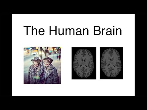 Extraordinary Variations of the Human Mind: Dan Geschwind: Our Brains: Life on a Continuum