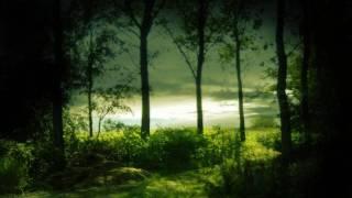 Download Lagu Derango - Parvatrip Mp3