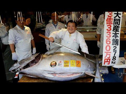 Το ψάρι που πωλήθηκε προς 2,7 εκατομμύρια ευρώ!