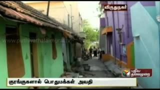 Monkey Menace at Palavanatham