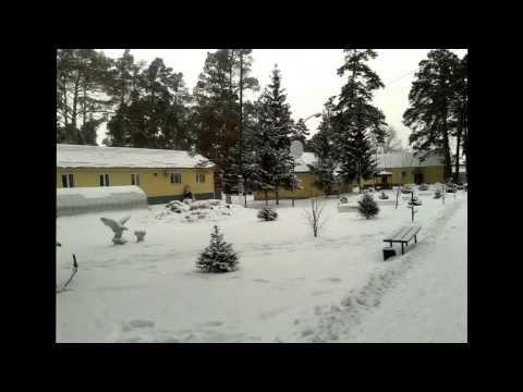 pavlovsk-altayskogo-kraya-prostitutki