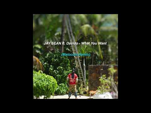 Jay Sean ft.  Davido - What You Want (Maiocchi Remix)