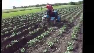 Мини трактор из мотоблока окучивание картофеля