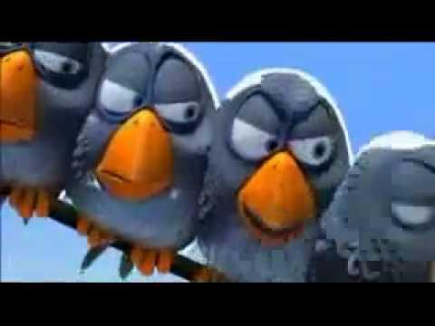 ציפורים על חוט תיל