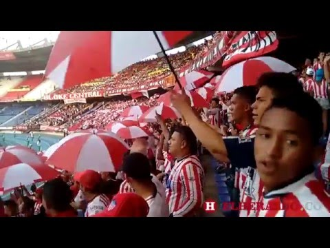 El Frente Rojiblanco prepara su propia final en la tribuna - Frente Rojiblanco Sur - Junior de Barranquilla