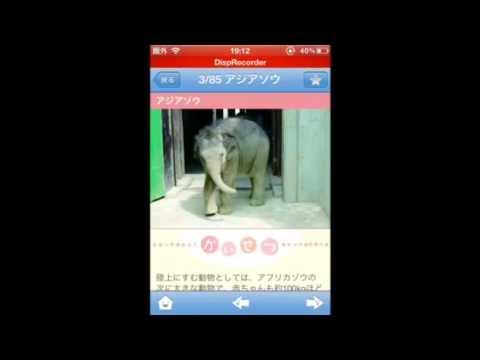 Video of 赤ちゃん動物図鑑100