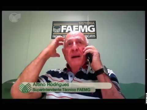 SINDICATO NA TV - Exposição Estadual Agropecuária (MG)/ Altino Rodrigues