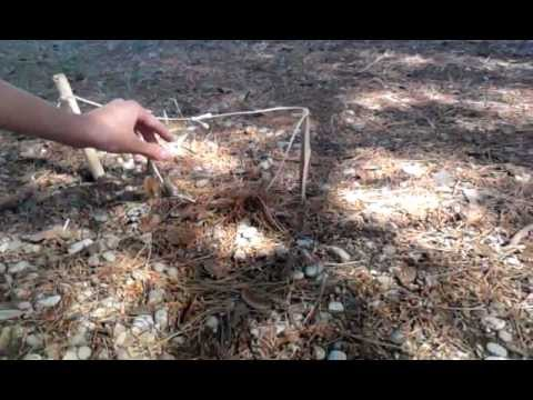 Trampa casera videos videos relacionados con trampa casera - Como hacer una trampa para ratas ...