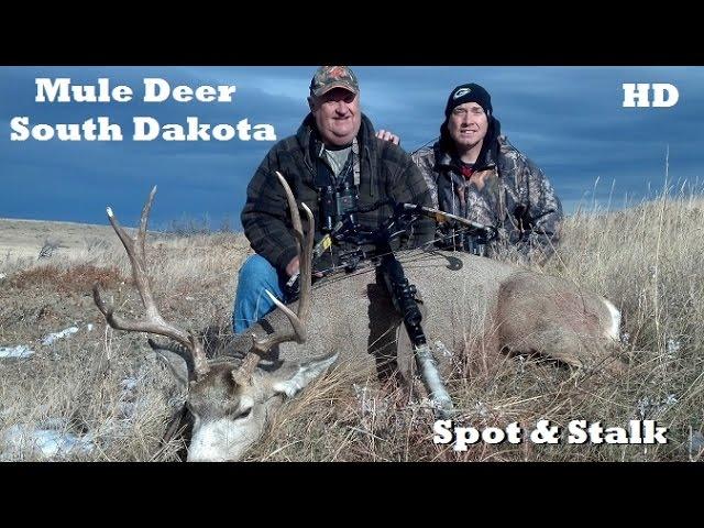 Mule Deer Cross bow Spot & Stalk in South Dakota