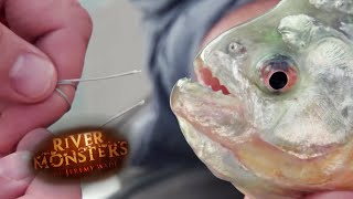 Can a Piranha Bite Through Steel? - River Monsters