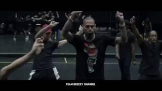 Chris Brown - Party Tour   w/ Fabolous , OT Genasis , Kap G  Team Breezy  Instagram Videos