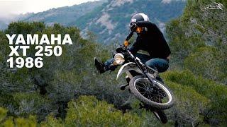 9. Motorcycle wheeling & whips Madness - Adrien Dailly X BeeA Energy - Yamaha XT 250