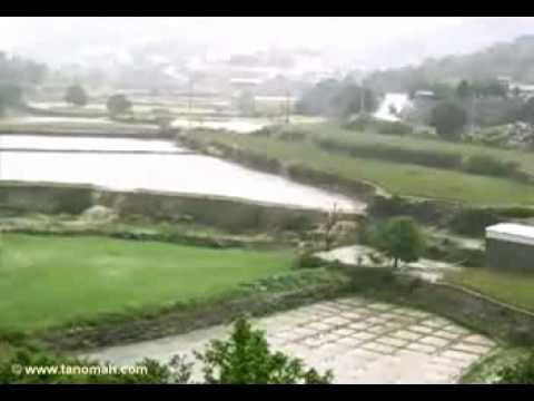 الماء ينساب من المدرجات الزراعية( ولد تنومة)