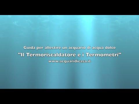Il Termoriscaldatore e i Termometri (Guida per allestire un acquario di acqua dolce)