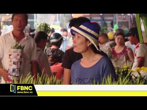 TPHCM dự kiến tiêu thụ 1 triệu chậu mai, hoa kiểng tết