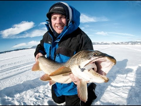 Lake Trout Ice Fishing: Monster 41″ Lake Trout On Jigging Lures