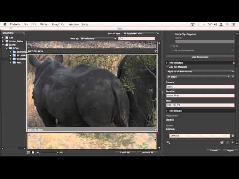 DSLR Editing Workflow in Adobe Premiere Pro CC, Part 2: From the Camera to Adobe Prelude CC