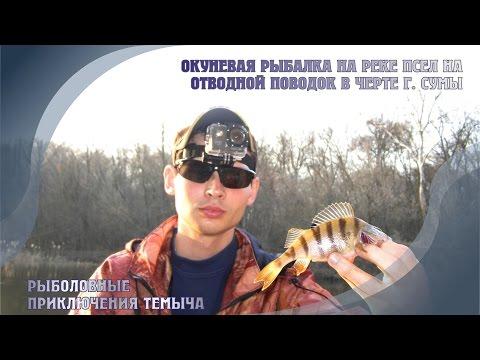 рыболовные форумы сумы