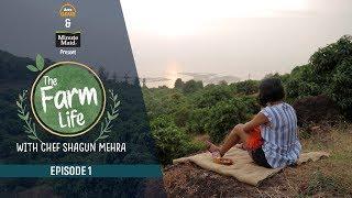 Arre Grub - Episode 1   The Farm Life   Minute Maid Mango Special