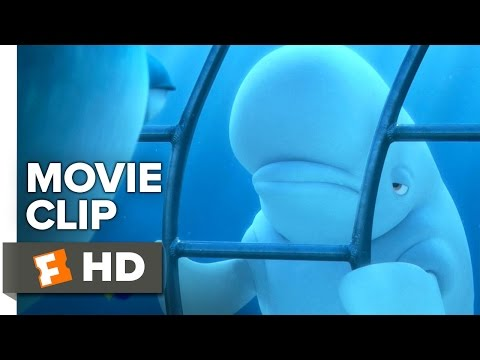 Video Finding Dory Movie CLIP - You're a Beluga (2016) - Ellen DeGeneres, Ty Burrell Movie HD download in MP3, 3GP, MP4, WEBM, AVI, FLV January 2017