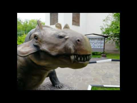 Darvinovskij muzej - kak fotozona s dinozavrami