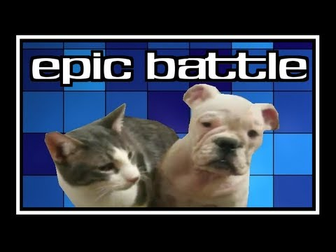 Funniest video epic battle
