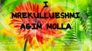 Agim Molla - Potpuri Popullore.wmv