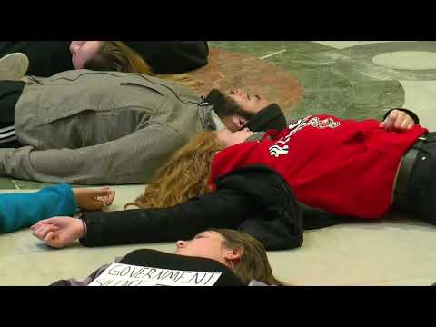 Minn. Students Stage 'Die-In' Over Gun Violence (видео)