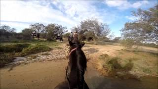 Kalbarri Australia  city images : Horse riding - Kalbarri National Park, Western Australia