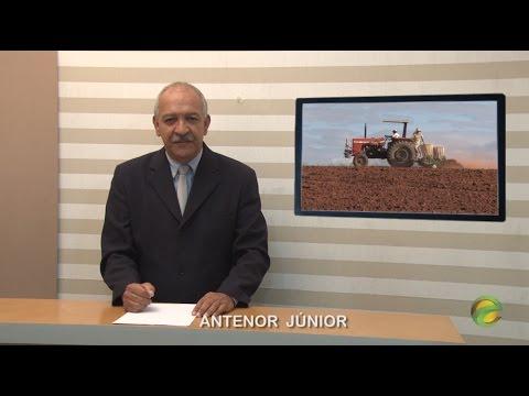 Agricultura, esporte e paredão em Euclides da Cunha.