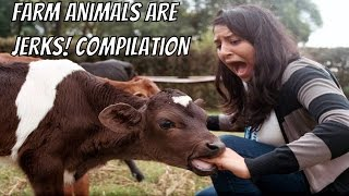 "FARM ANIMALS ARE JERKS COMPILATION ►► Farm animals. So docile, so peaceful. We even teach ""Old McDonald"" to little kids. Don't be fooled! Farms are full of jerk animals who only think about themselves. Be they sheep, cows, pigs, horses, or ducks, they are all jerks!►Visit the Clip'wreck Channel to see more awesome, funny, and  amazing Compilation Videos! (https://www.youtube.com/channel/UCTep0GOBv8YPhCCbXVtDBLQ)►Follow Clip'wreck on Twitter! (https://twitter.com/ClipwreckVideos)Music ►http://www.bensound.com ► http://www.purple-planet.com/home/4583818248 ► http://creativecommons.org/licenses/by/3.0/***********************************************************I am not the creator of this content. I am just a compiler of online content I find enjoyable. For any concerns about content ownership, please contact me at the address listed in my channel description."