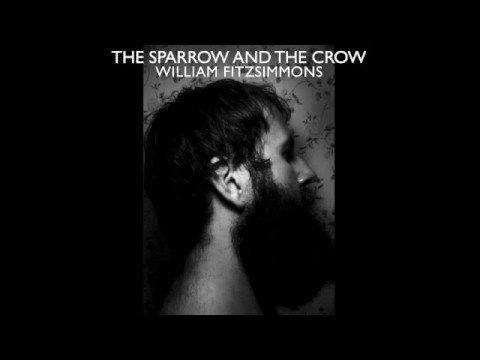 Tekst piosenki William Fitzsimmons - You Still Hurt Me po polsku