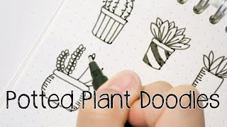 Potted Plant/Succulent Doodles | Doodle with Me
