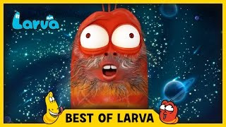 Larva brings you the best of the Larva Episodes for week 9 of 2017. Tune in and join red and yellow on their wild adventures. ⏩⏩⏩ SUBSCRIBE to LARVA: http://...
