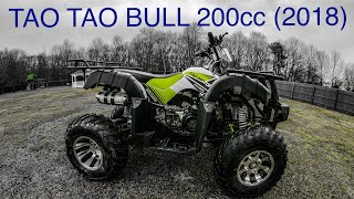 1. TAO TAO BULL 200 ATV QUAD (2018 version 200cc) REVIEW