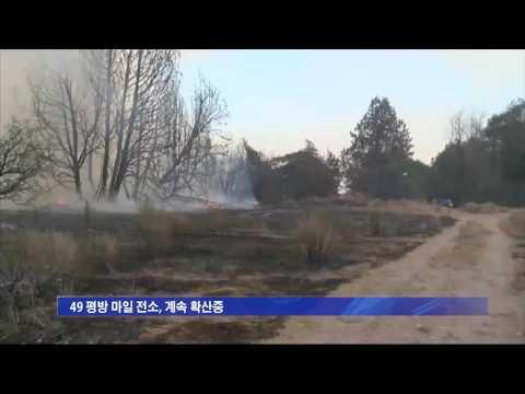 불루컷 산불 진화율 4%  8.18.16 KBS America News