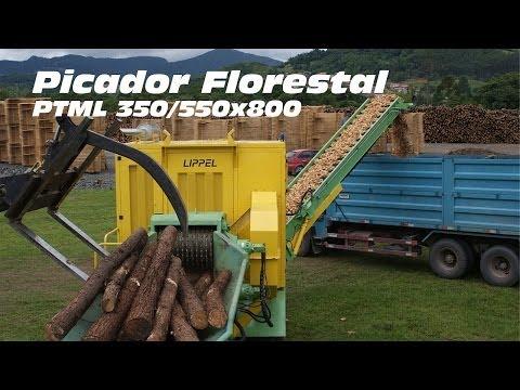 Picador Florestal  PTML 350/550x800 - picando madeira para produção de cavacos