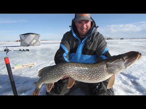 How to Use Tip Ups to Catch Big Fish